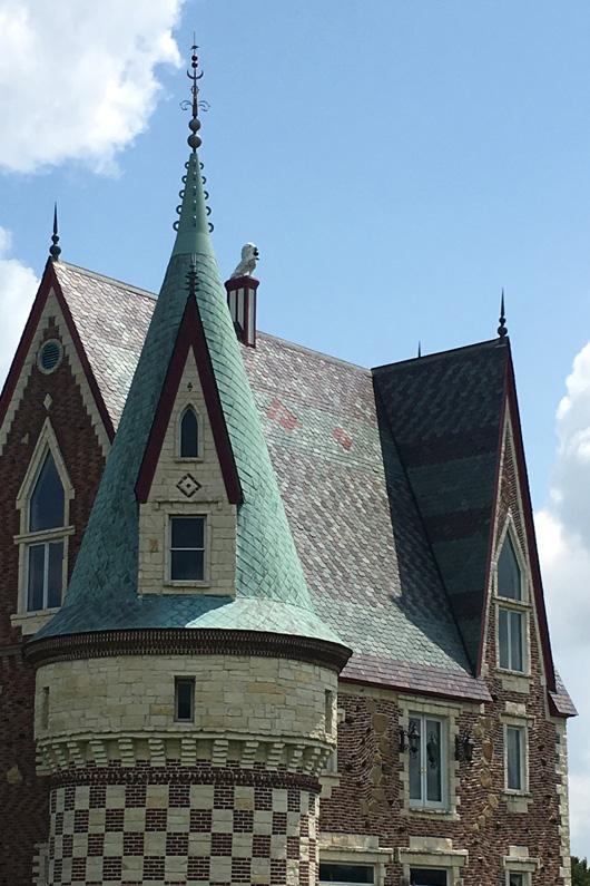 Château Voda Nymphéehe - Slate Roof